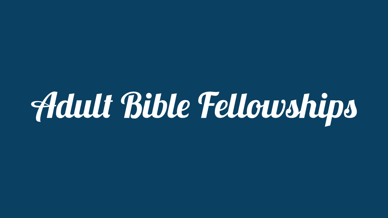 Adult Bible Fellowships 2015