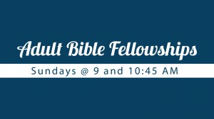 14 Adult Bible Fellowships