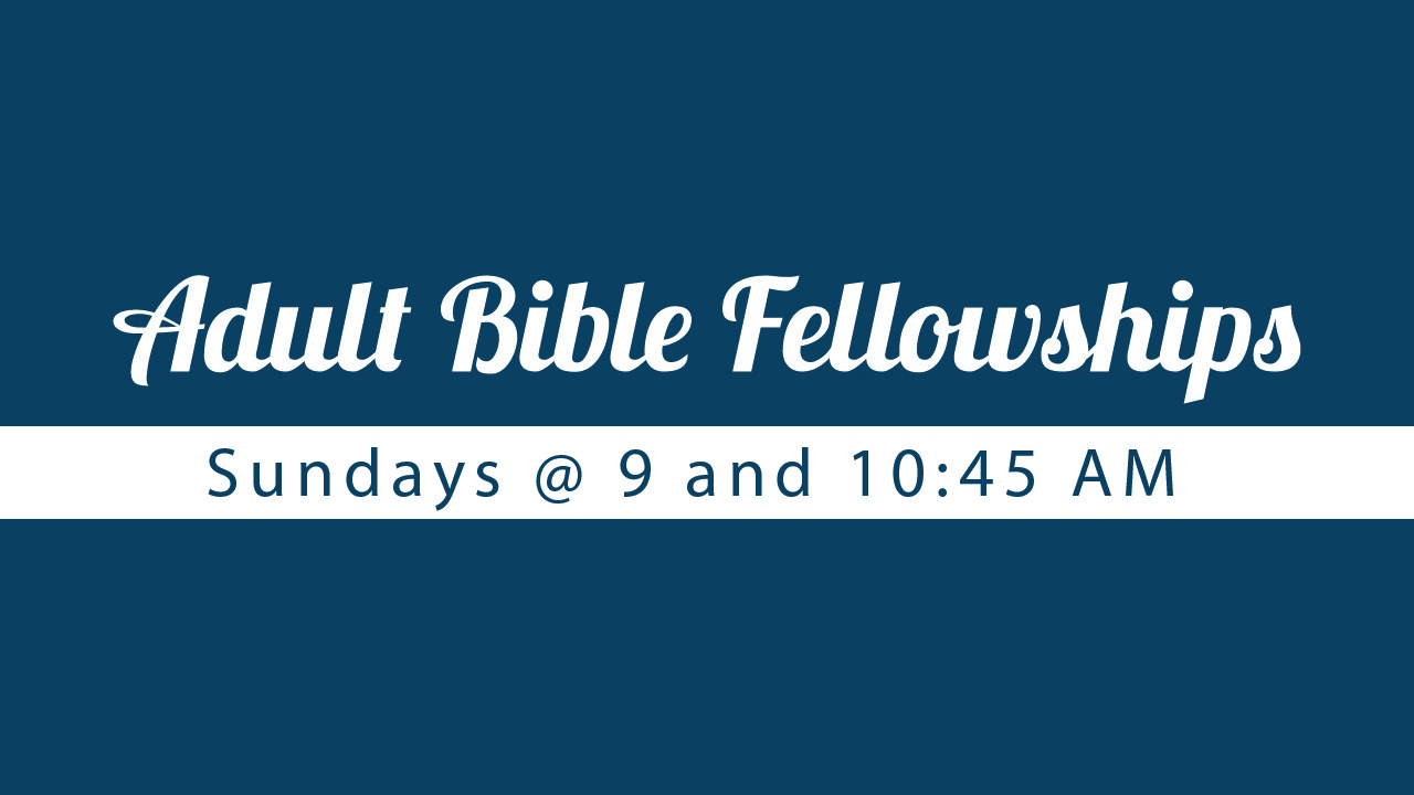 Adult Bible Fellowships 2014
