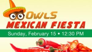 15 OWLS Fiesta