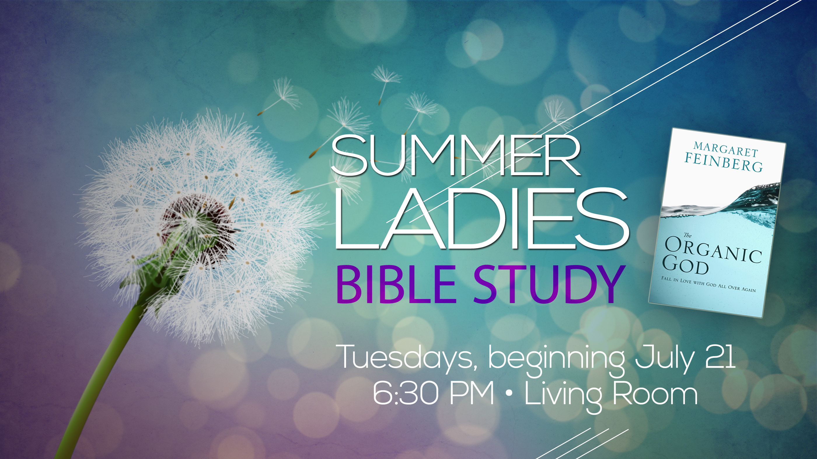 Summer Ladies Bible Study