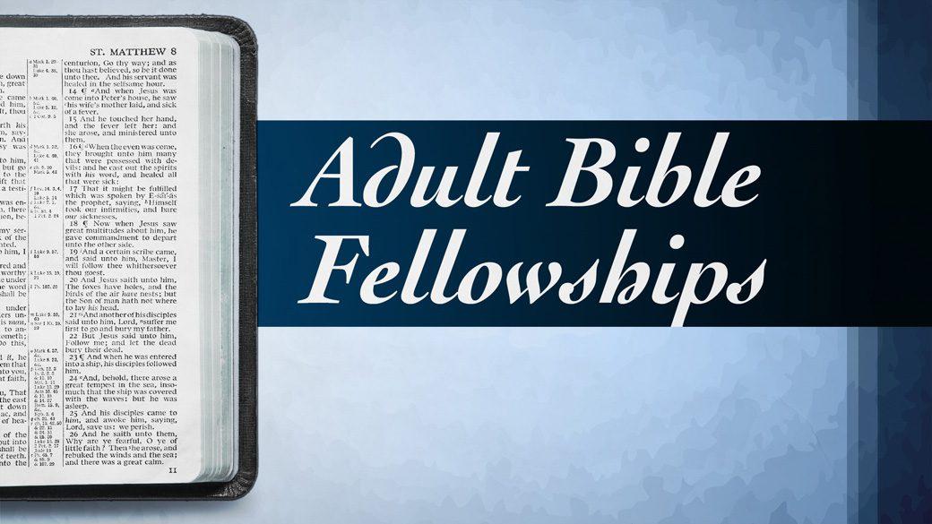 Adult Bible Fellowships 2016