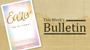 Click to download this week's bulletin.