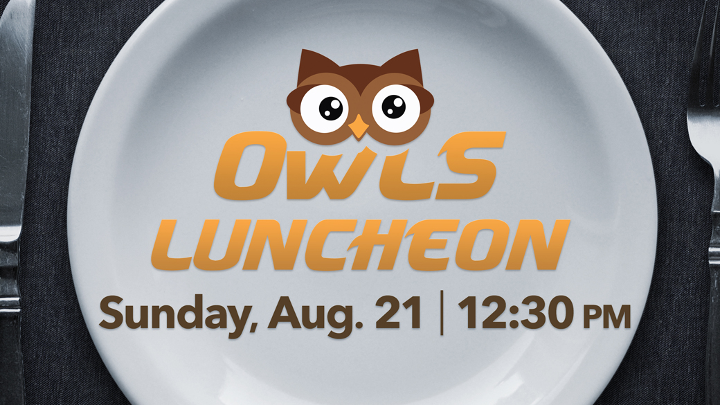 OWLS Baked Steak Luncheon