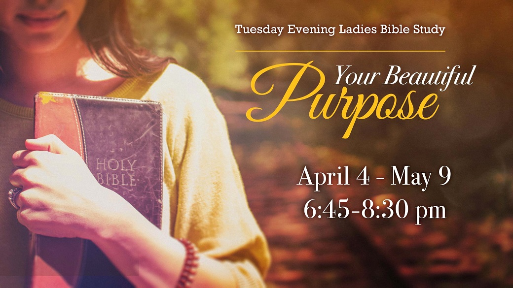Tuesday Evening Ladies Bible Study