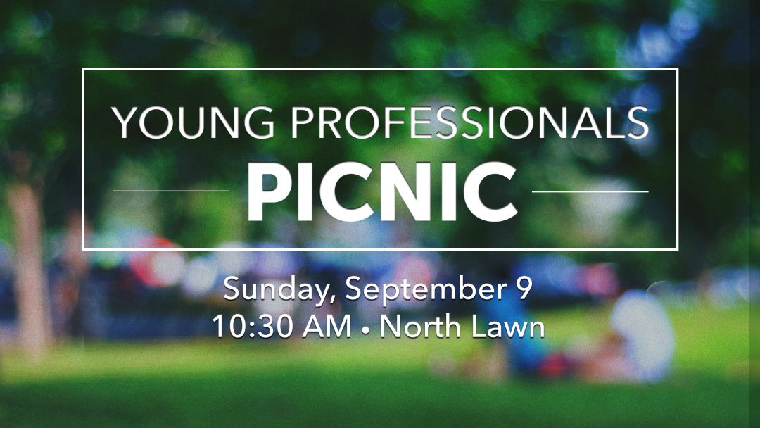 Young Professionals Picnic – Guests Welcome!