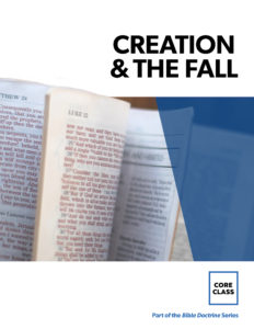 19 CC Creation Book Cover