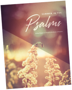 19 Psalms cover