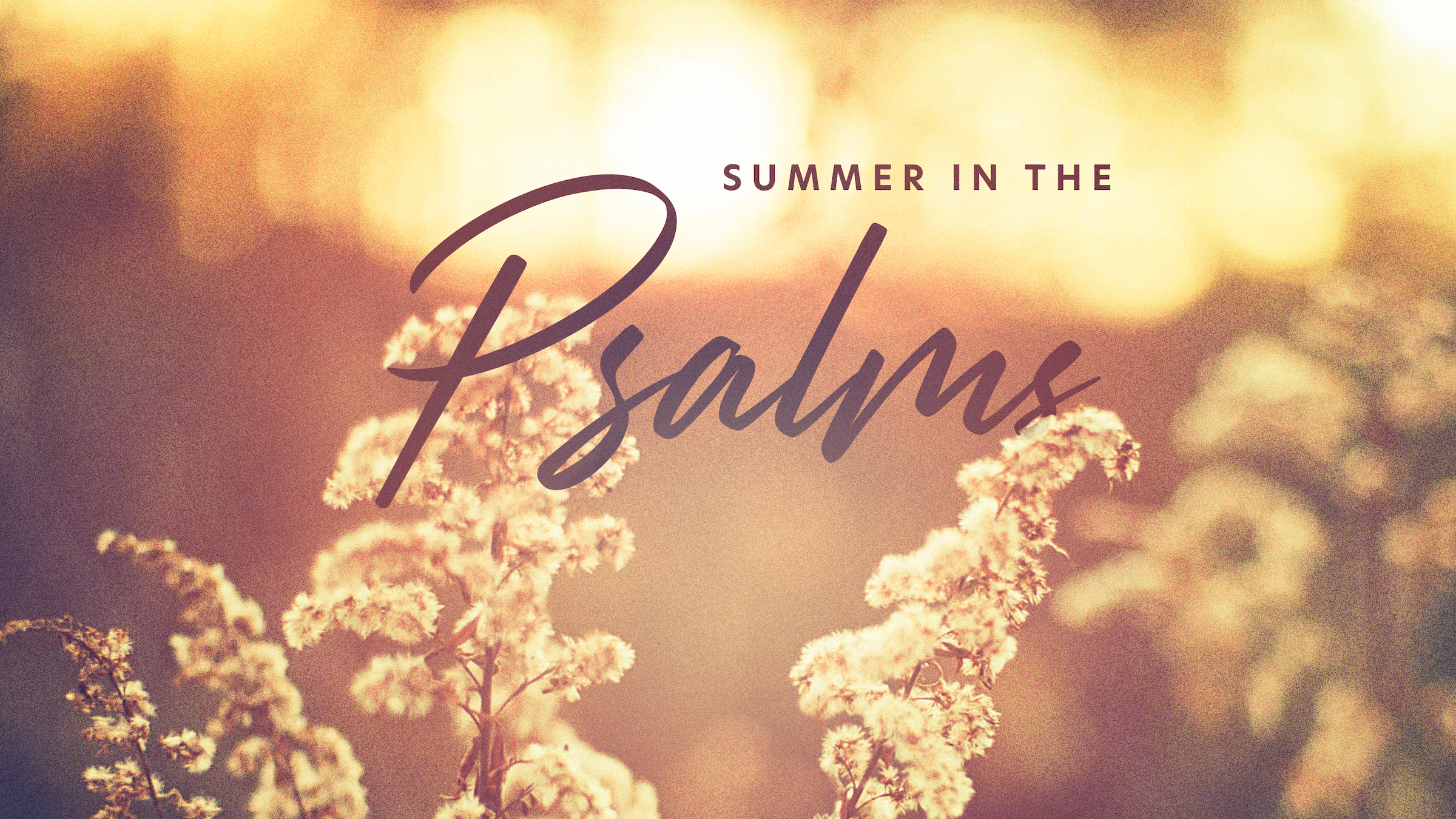 Summer in the Psalms 2