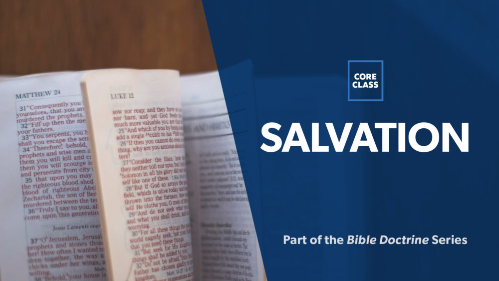 Image for 06: Survey on the Doctrine of Salvation