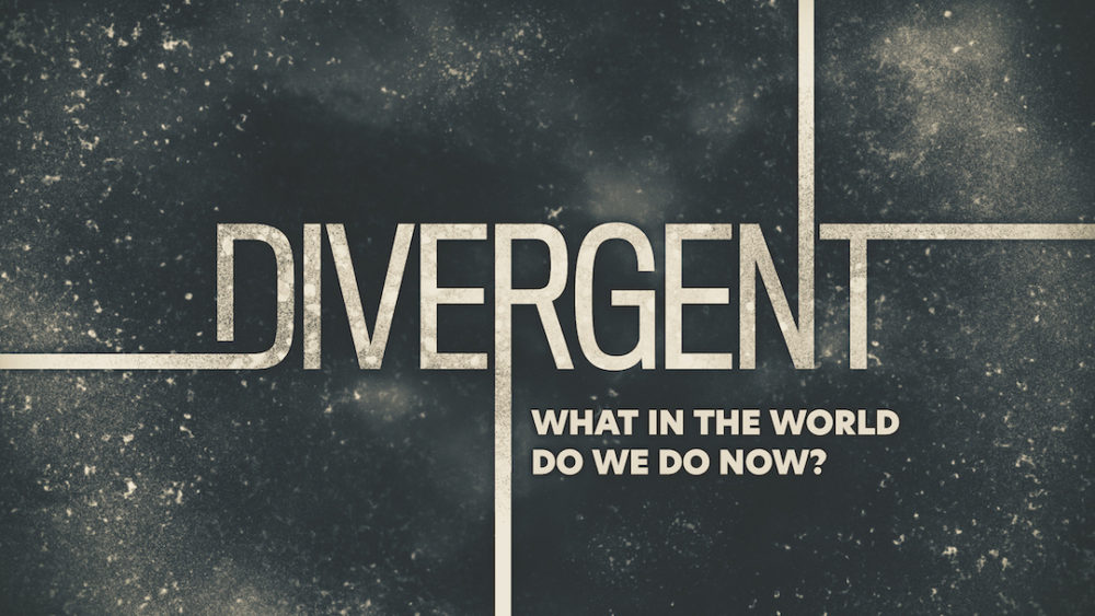 Divergent: What in the World Do We Do Now?