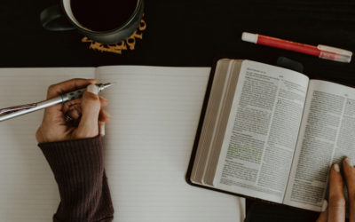 8 Reasons to Believe the Bible