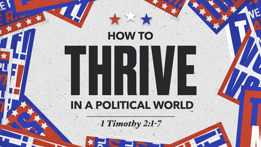 How to Thrive in a Political World Image