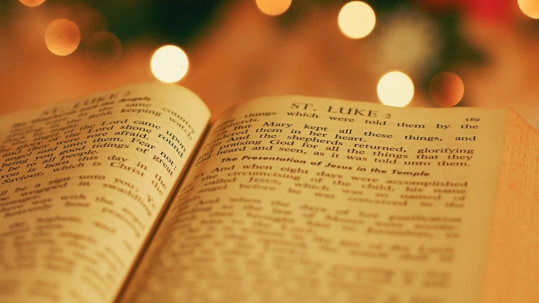 Christmas Lights: A True Story