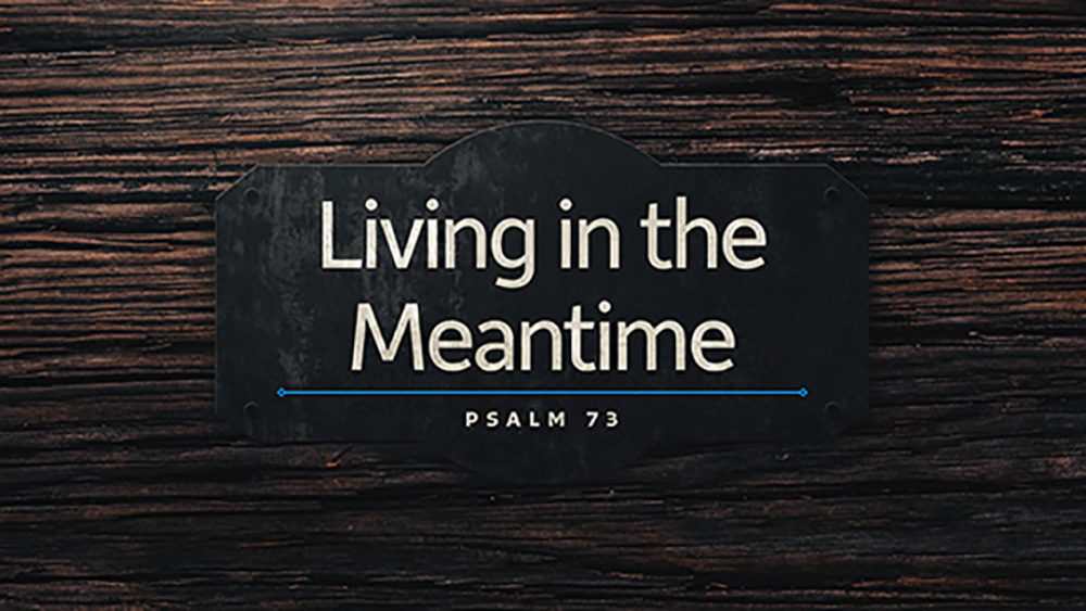 Living in the Meantime Image