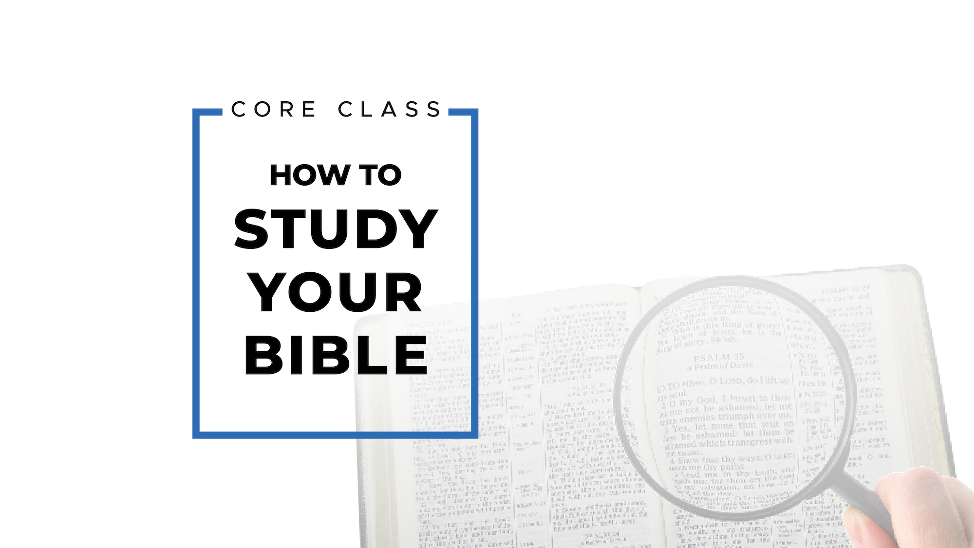 How to Study Your Bible Image
